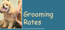 Grooming Rates